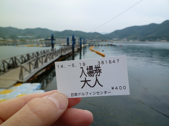 s-P1050059