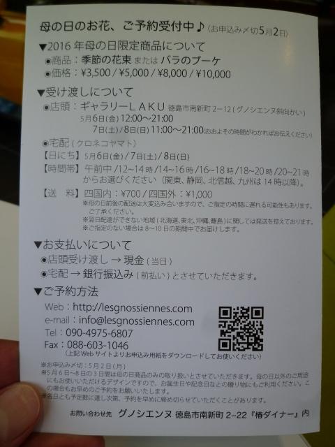s-P1090654